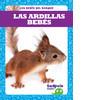 Cover: Las ardillas bebés (Squirrel Kits)