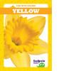 Cover: Yellow