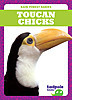 Cover: Toucan Chicks