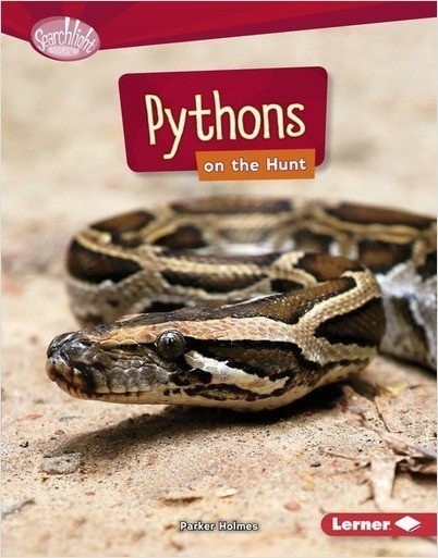 Cover: Pythons on the Hunt