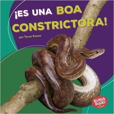 Cover: ¡Es una boa constrictora! (It's a Boa Constrictor!)