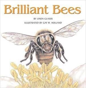 Cover: Brilliant Bees