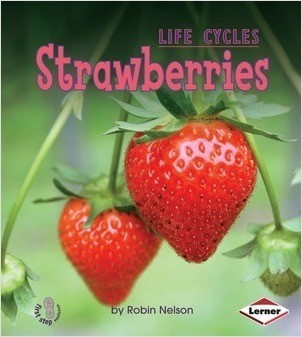 Cover: Strawberries