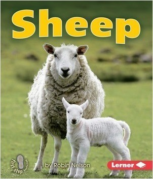 Cover: Sheep
