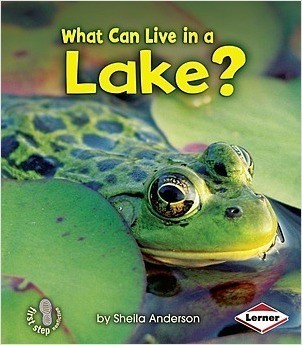Cover: What Can Live in a Lake?