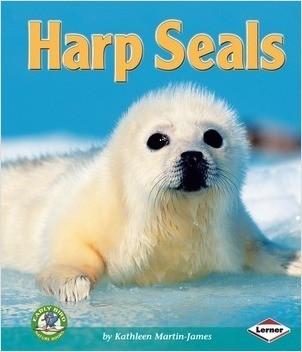 Cover: Harp Seals