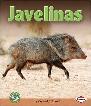 Cover: Javelinas