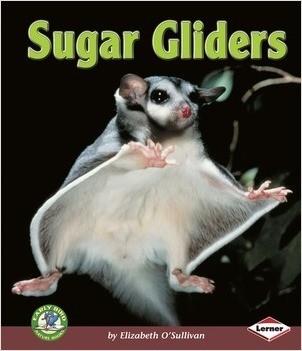 Cover: Sugar Gliders