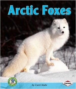 Cover: Arctic Foxes