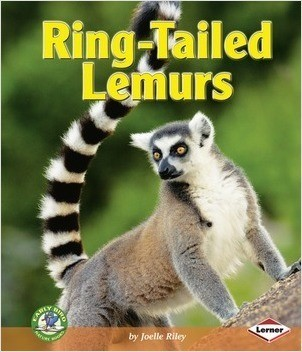 Cover: Ring-Tailed Lemurs
