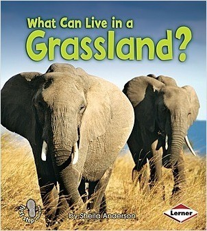 Cover: What Can Live in a Grassland?