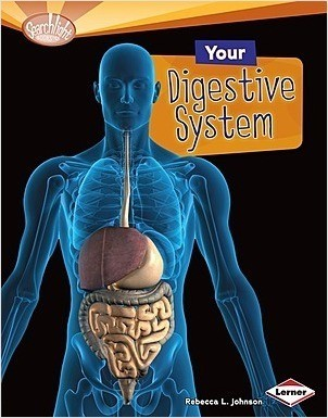 Cover: Your Digestive System