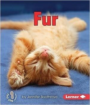 Cover: Fur