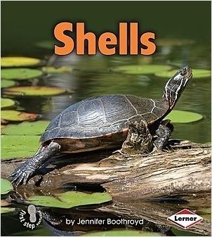 Cover: Shells