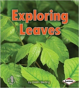 Cover: Exploring Leaves