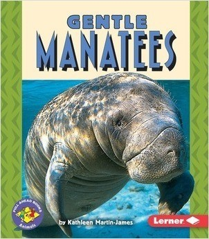 Cover: Gentle Manatees