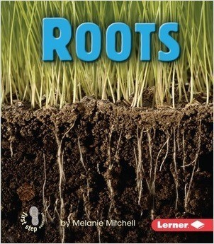 Cover: Roots