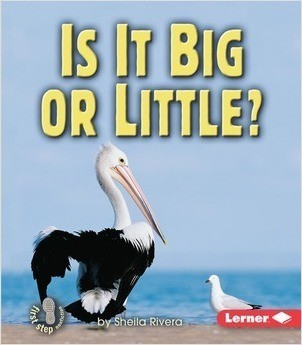 Cover: Is It Big or Little?
