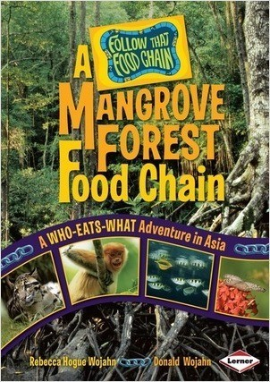 Cover: A Mangrove Forest Food Chain: A Who-Eats-What Adventure in Asia