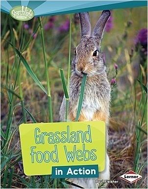 Cover: Grassland Food Webs in Action