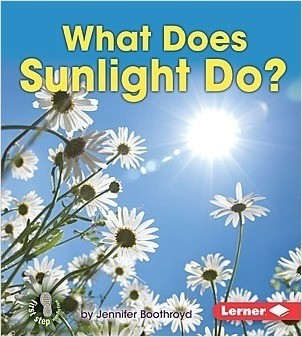 Cover: What Does Sunlight Do?
