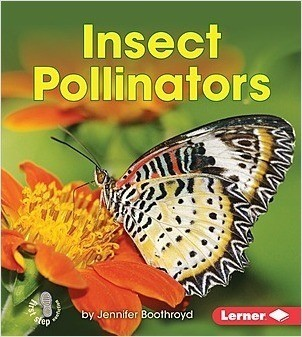 Cover: Insect Pollinators