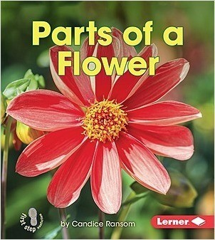 Cover: Parts of a Flower