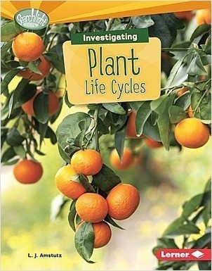 Cover: Investigating Plant Life Cycles
