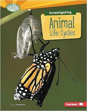 Cover: Investigating Animal Life Cycles