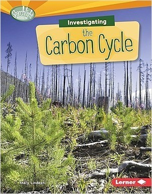 Cover: Investigating the Carbon Cycle