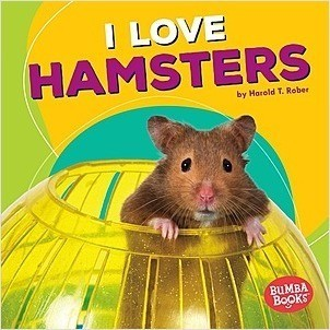 Cover: I Love Hamsters