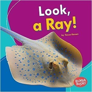 Cover: Look, a Ray!
