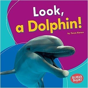 Cover: Look, a Dolphin!