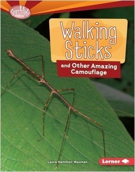 Cover: Walking Sticks and Other Amazing Camouflage