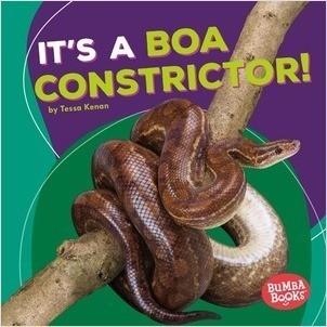 Cover: It's a Boa Constrictor!