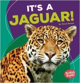 Cover: It's a Jaguar!
