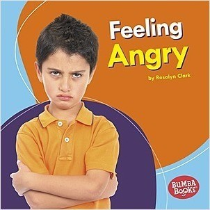 Cover: Feeling Angry
