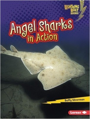 Cover: Angel Sharks in Action