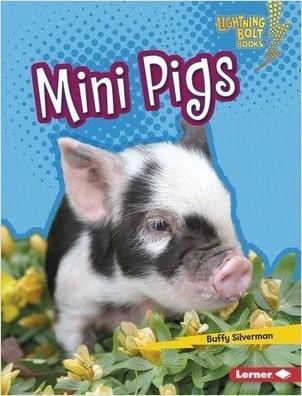 Cover: Mini Pigs