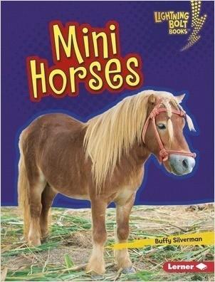 Cover: Mini Horses