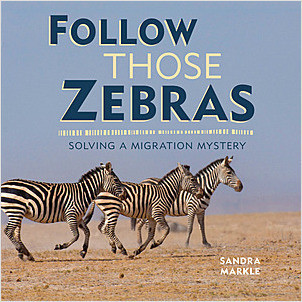 Cover: Follow Those Zebras: Solving a Migration Mystery