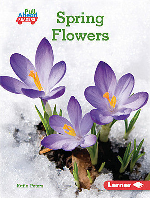 Cover: Spring Flowers