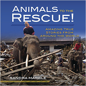 Cover: Animals to the Rescue!: Amazing True Stories from around the World