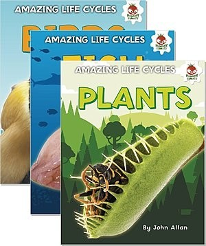 Cover: Amazing Life Cycles — Hardcover Set
