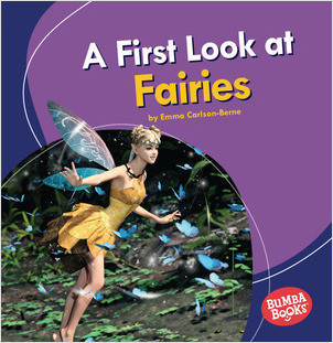 Cover: A First Look at Fairies