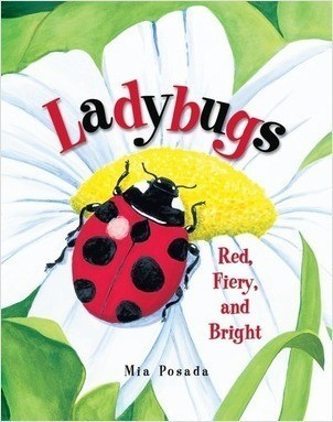 Cover: Ladybugs: Red, Fiery, and Bright