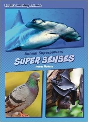 Cover: Super Senses
