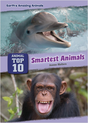 Cover: Smartest Animals