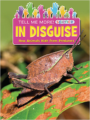 Cover: In Disguise: How Animals Hide from Predators