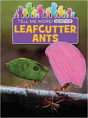 Cover: Leafcutter Ants